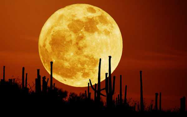 The brightest full moon of the year is tonight