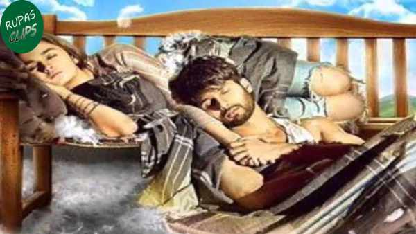 Shaandaar Total Box Office Collections