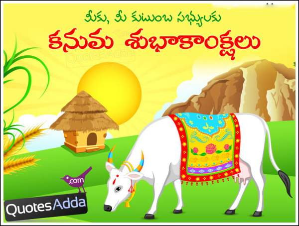 Happy Kanuma 2017 SMS, Wishes, Messages, Quotes, Images – status for Whatsapp Facebook