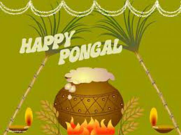 Happy Pongal 2017 Wishes Quotes SMS Messages WhatsApp Status Greetings