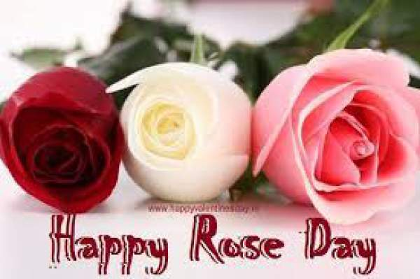 Happy Rose Day 2019 Images HD Wallpapers Pictures Pics Photos