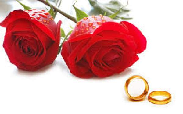 rose day, happy rose day 2017, happy rose day sms, rose day 2017 sms, rose day quotes, rose day 2017 quotes, rose day greetings, rose day messages, rose day wishes, rose day greetings, rose day whatsapp status