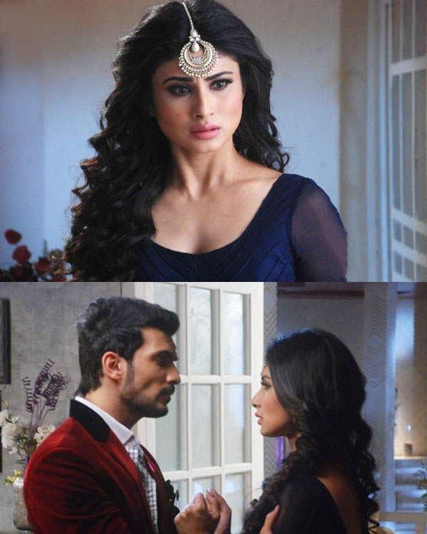 Naagin 24th April 2016 Episode