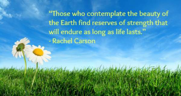 Happy Earth Day Quotes 2019 Slogans, Pictures, Wishes