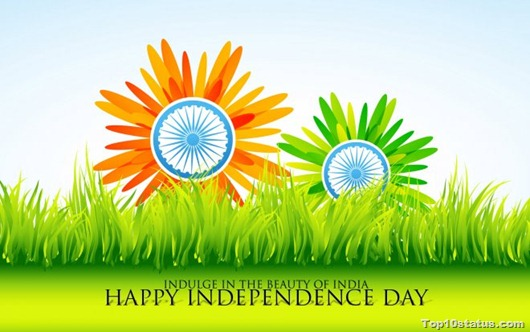 Facebook Cover photos to celebrate Independence Day with happiness