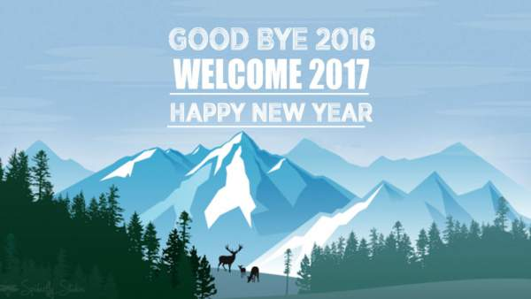 Goodbye 2016 Welcome 2017