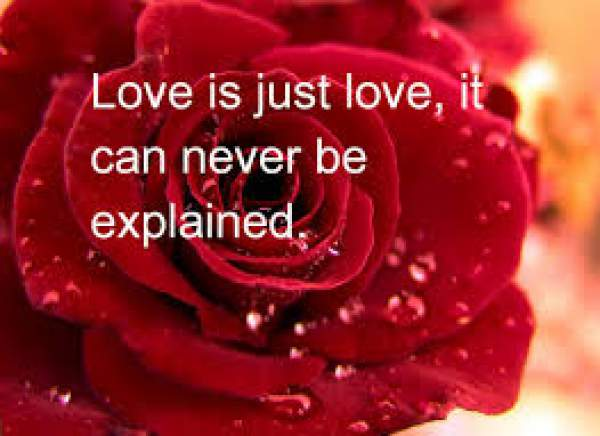 Happy Valentine's Day 2017 Poems, Valentine's Day Quotes, happy Valentine's Day poems, Valentine's Day 2017 quotes, Valentine's Day poems 2017, Valentine's Day quotes 2017, funny Valentine's Day poems, romantic Valentine's Day poems, funny Valentine's Day quotes, romantic Valentine's Day quotes