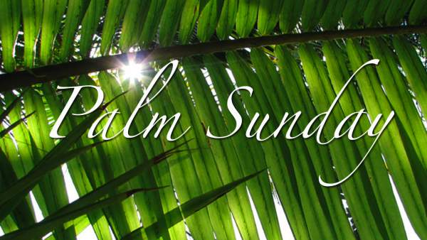 Happy Palm Sunday 2017 Images, Quotes, Wishes, Greetings, Photos, Prayer, Sermons