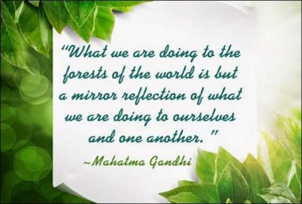 World Environment Day 2019 Quotes: Images, Sayings, Theme, Slogans for Mother Nature