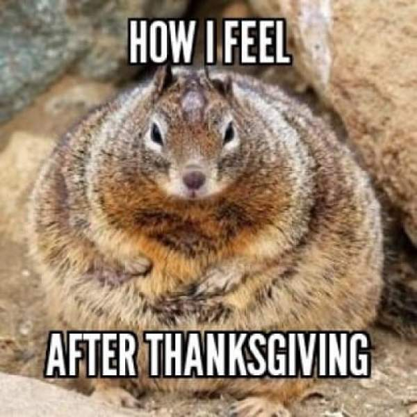 happy thanksgiving day 2017 images, thanksgiving day images, thanksgiving day memes, thanksgiving day wallpapers, thanksgiving day pictures, thanksgiving day photos, thanksgiving day pics, happy thanksgiving images, thanksgiving pictures
