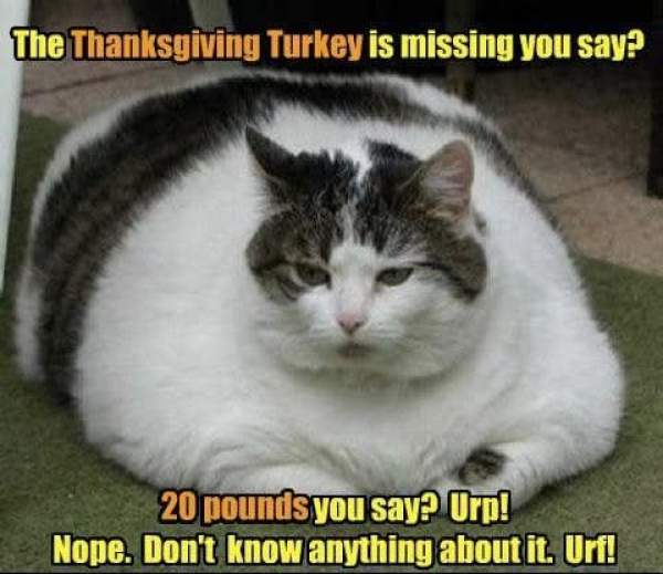 happy thanksgiving day 2018 images, thanksgiving day images, thanksgiving day memes, thanksgiving day wallpapers, thanksgiving day pictures, thanksgiving day photos, thanksgiving day pics, happy thanksgiving images, thanksgiving pictures