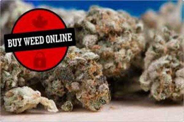 5 Mistakes To Avoid While Buying Weed Online