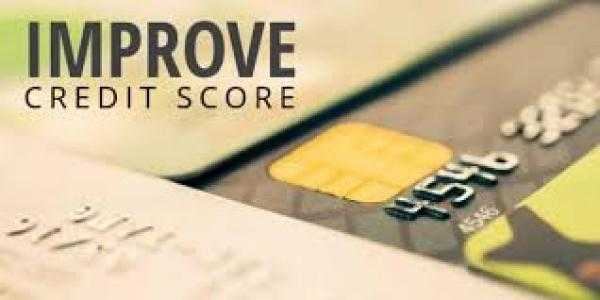 Top Remarkable Tips on How to You Can Build a Reputable Credit History by Use of Your Credit Card